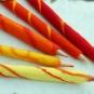 Filz-Stifte 2