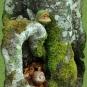 Waldäuglinge am bemoosten Baum