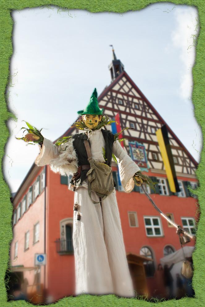 Die Vogelscheuche mit grünem Filzhut 2