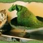 Kräuterhexenhut