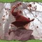 Blutbuchenkoboldhut 2