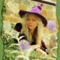 Hexenhut Violett