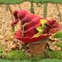 Roter Elfenhut 2