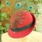 Roter Hut nach Wolfegger Hausbuch