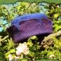 Zinnenhut in violett und blau 3