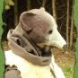 Bärenmaske 2