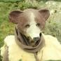 Bärenmaske 3