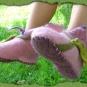 Schuhblume