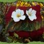 Filztasche Blumenwiese rot