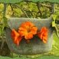 Kapuzinerkresse-Tasche